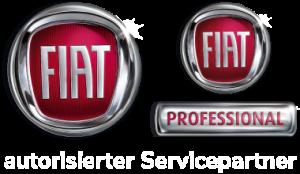 Fiat & Fiat Professionalservice Icon